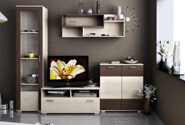 секция-телевизор